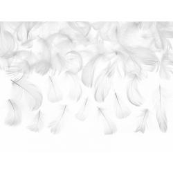 Piórka do dekoracji białe 3g